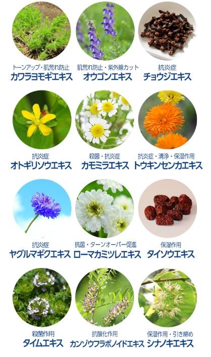 ドクターケシミーgoに使われている植物エキス